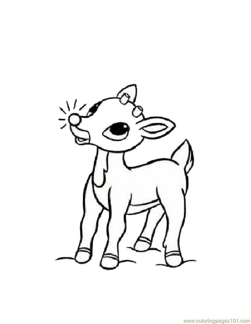 Coloring Pages Baby Deers Mammals Gt Deer Free Printable