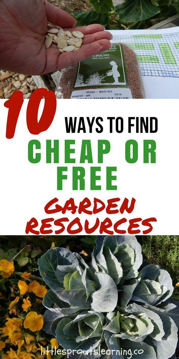 Photo of 10 Möglichkeiten, günstige oder kostenlose Gartenressourcen zu finden
