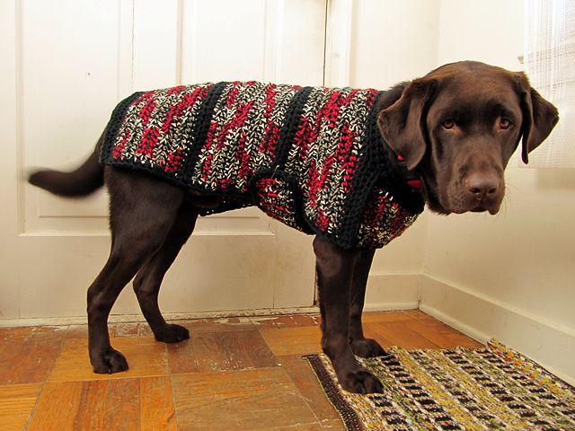 Ravelry: Dog Sweater-Jacket pattern by Laura Landry. For Beyla ...
