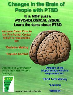 Changes in the brain of people with PTSD - here is the why. Now to find out how to get my memory back.
