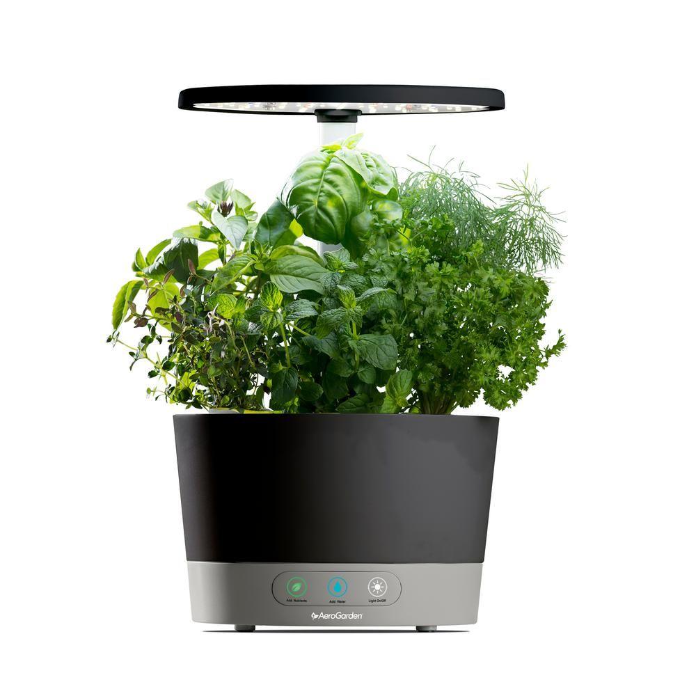 Aerogarden Harvest 360 Black Home Garden System Herbs 400 x 300