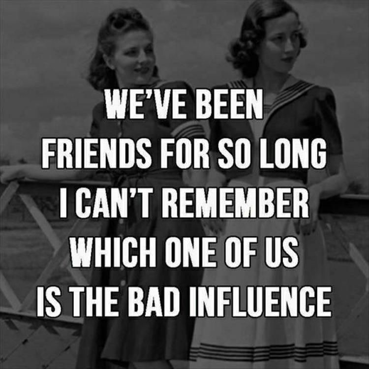 Funny Pictures Of The Day 33 Pics Friends Quotes Funny Best Friendship Quotes Friendship Quotes Funny