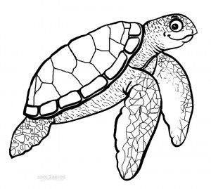 Hawksbill Sea Turtle Coloring Pages Sea and Ocean Animals