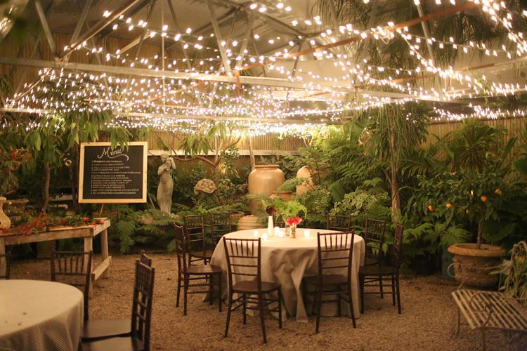 green house = twinkle lights equals uber romantic greenhouse