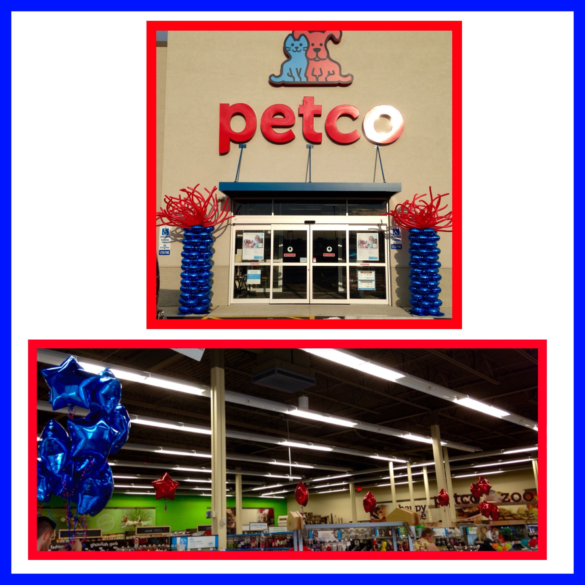 One Of Six Petco Store Openings This Morning Here We Are In Lima Oh Balloons Balloondecorating Lotparty Com Petco Petcoun Balloons Grand Opening Party