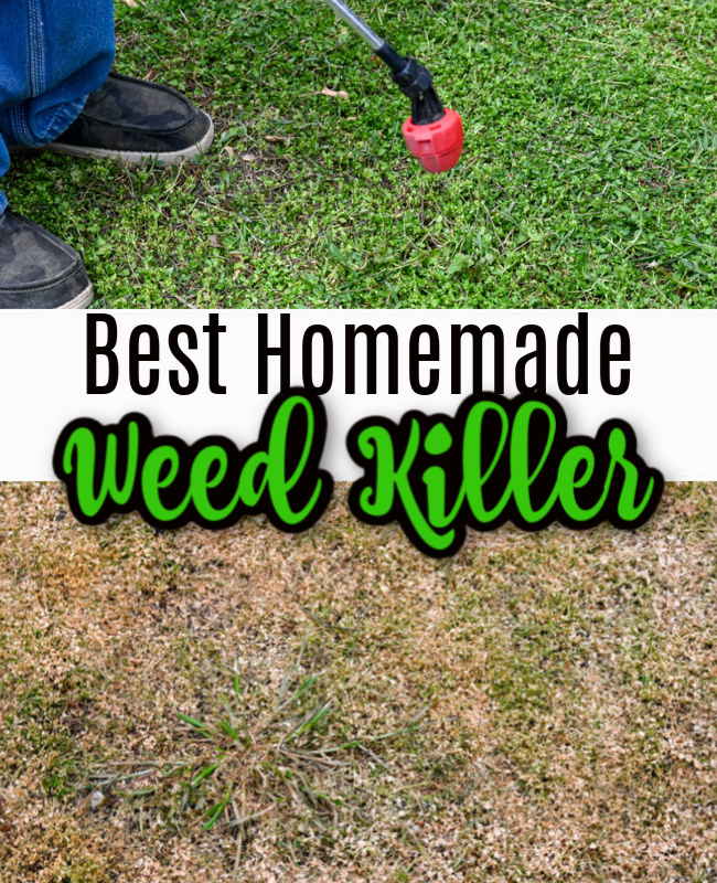 73a27339863119451bcc7aff51242e83 - The Best Weed Killer For Gardens