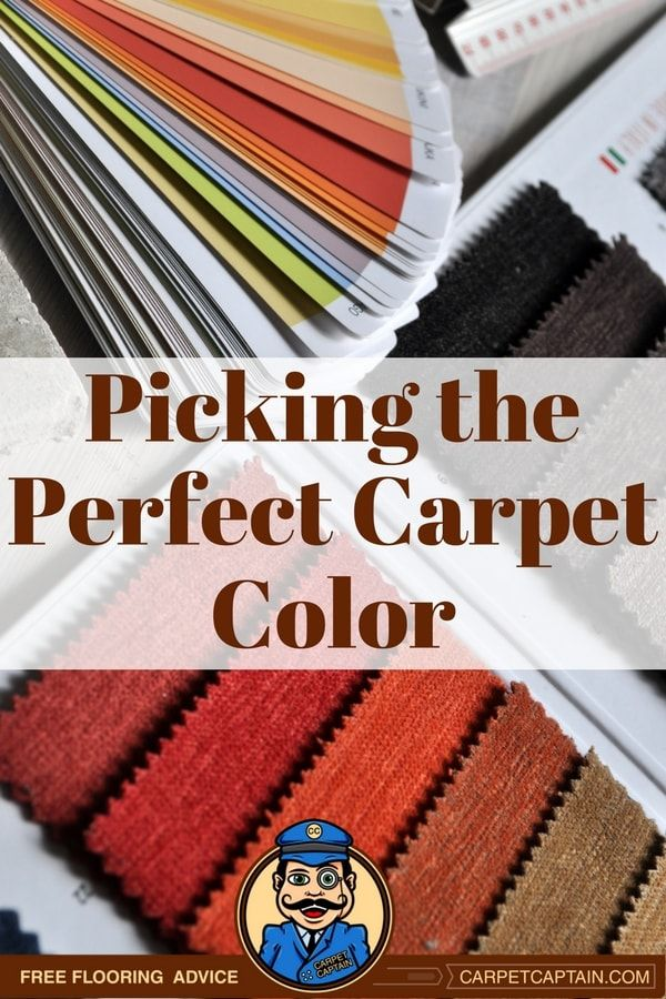 Perfect Carpet Color for Your Home in 2020 Carpet colors