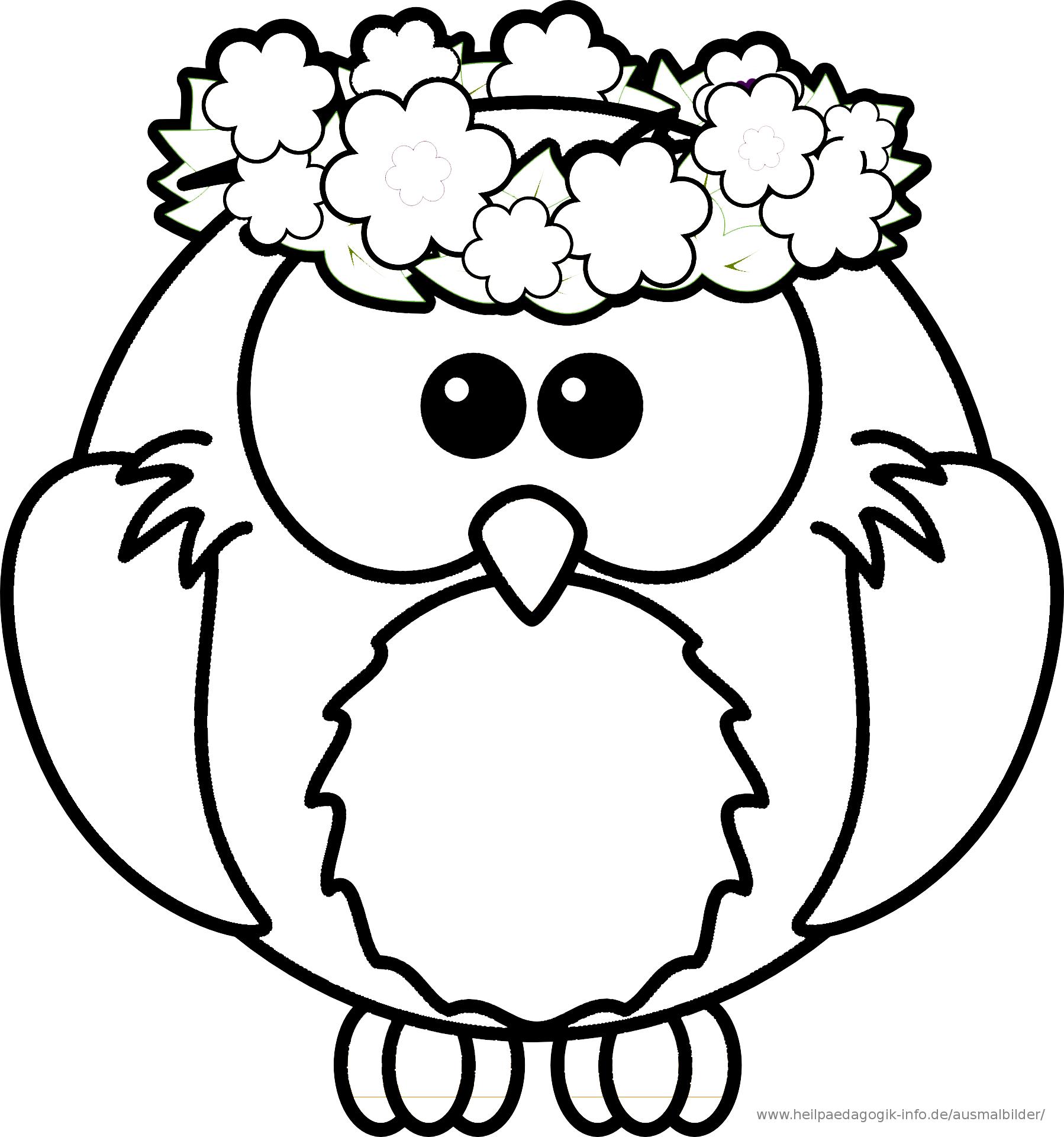 Ausmalbilder bilder Malvorlage eule Ausmalbilder Vogel