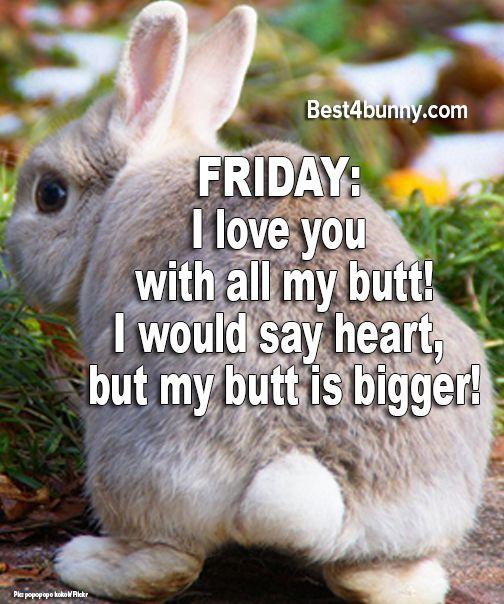 Happy Friday! www.best4bunny.com