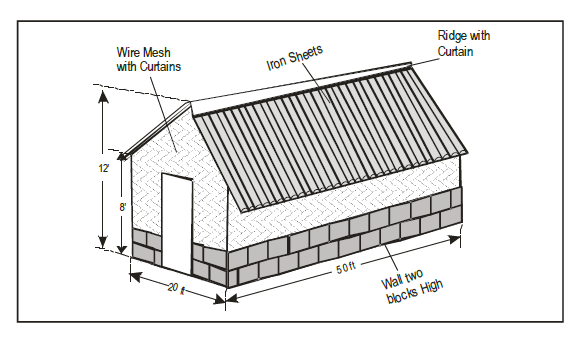 Poultry farming in kenya layers house with dimensions for Poultry house plans for 100 chickens