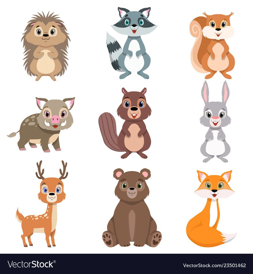 Cute Forest Animals And Birds Set Squirrel Hare Vector Image Forest Animals Illustration Squirrel Illustration Deer Cartoon