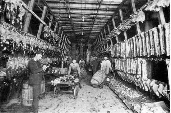 Image result for meat inspection act of 1906