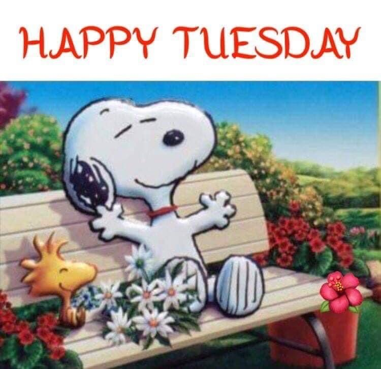 Pin By Barbara Melcher On Peanut Gang In 2020 Tuesday Humor Happy Tuesday Quotes Good Morning Snoopy