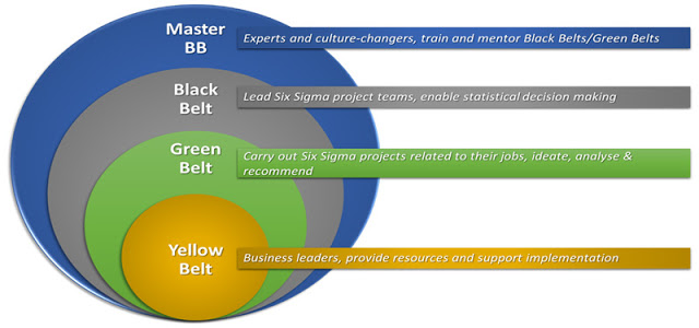 Top 10 Reasons To Get Six Sigma Certified Business Leader Green Belt 10 Reasons
