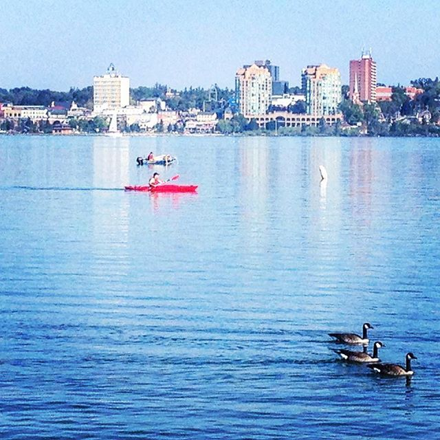 Morning Rushhour Traffic Barrie Style Getoutandplay Visitbarrie Kayak Boat Birds Tourism Instagram New York Skyline