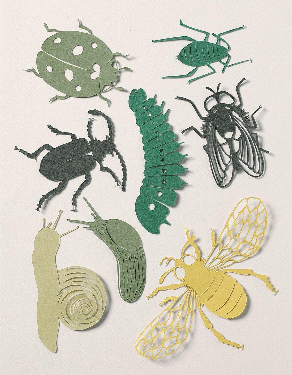 мероприятия объемные картинки насекомых что