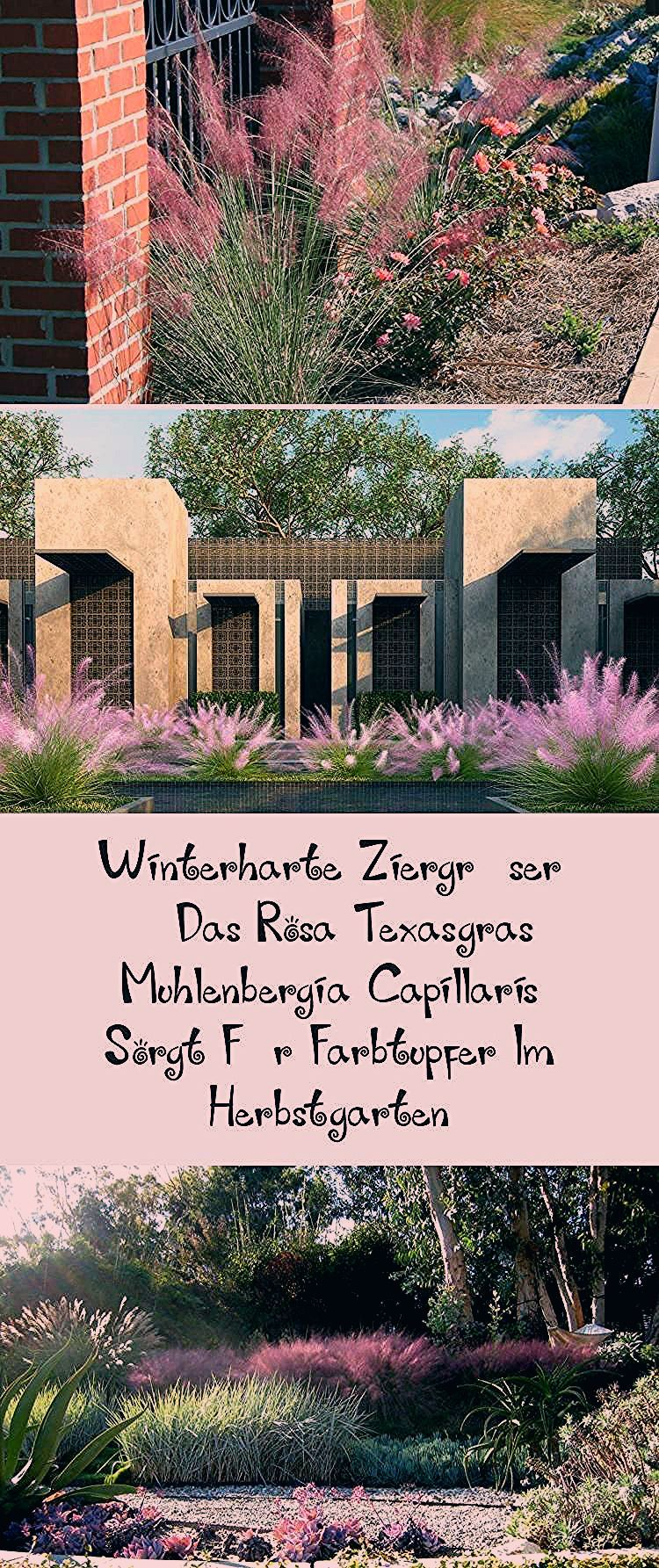 Photo of Gartengräser Winterhart