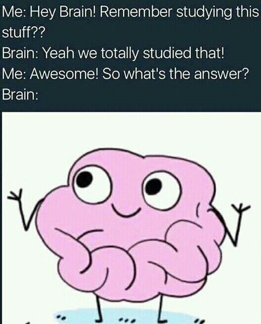 Brain Jokes Betrayal Of The Highest Level Physics Humor