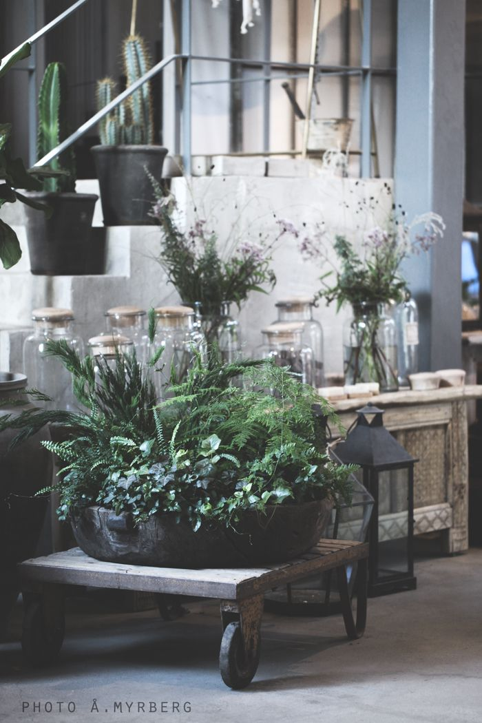 ⭐++++++++++I love this mix   FOLLOWING STYLING                  DUNJA
