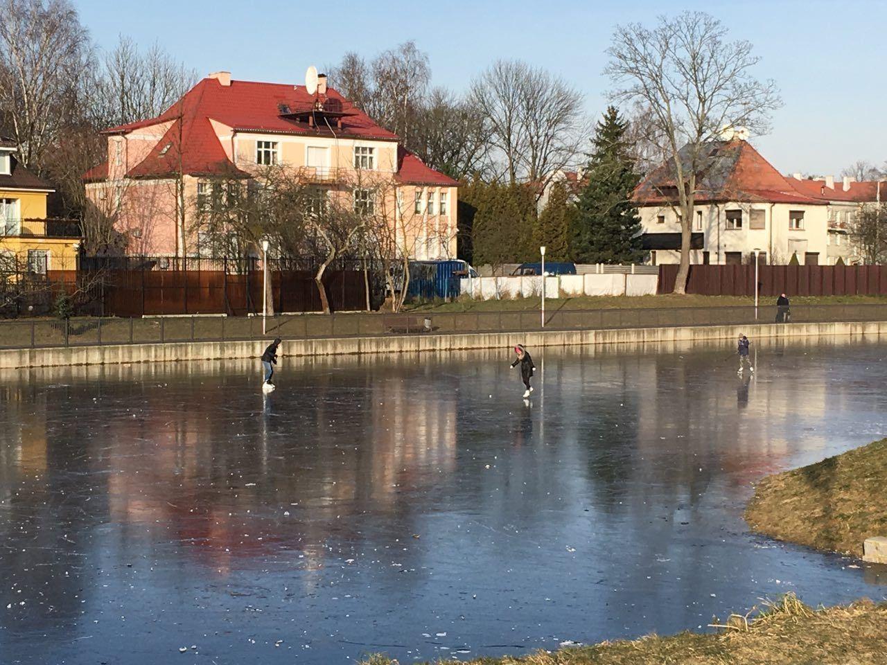 Покатушки на коньках. Фото: Evgenia Shveda