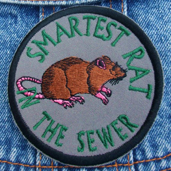 Smartest Rat in the Sewer embroidered patch by bohemianblue