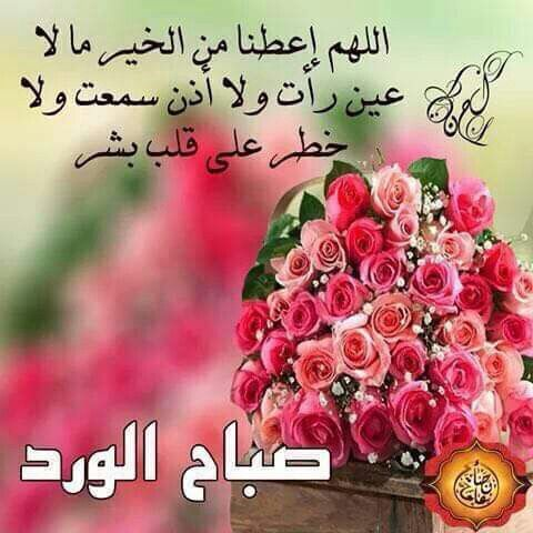 اللهم امين صباح الورد والخيرات Good Thoughts Good Morning Blog Posts