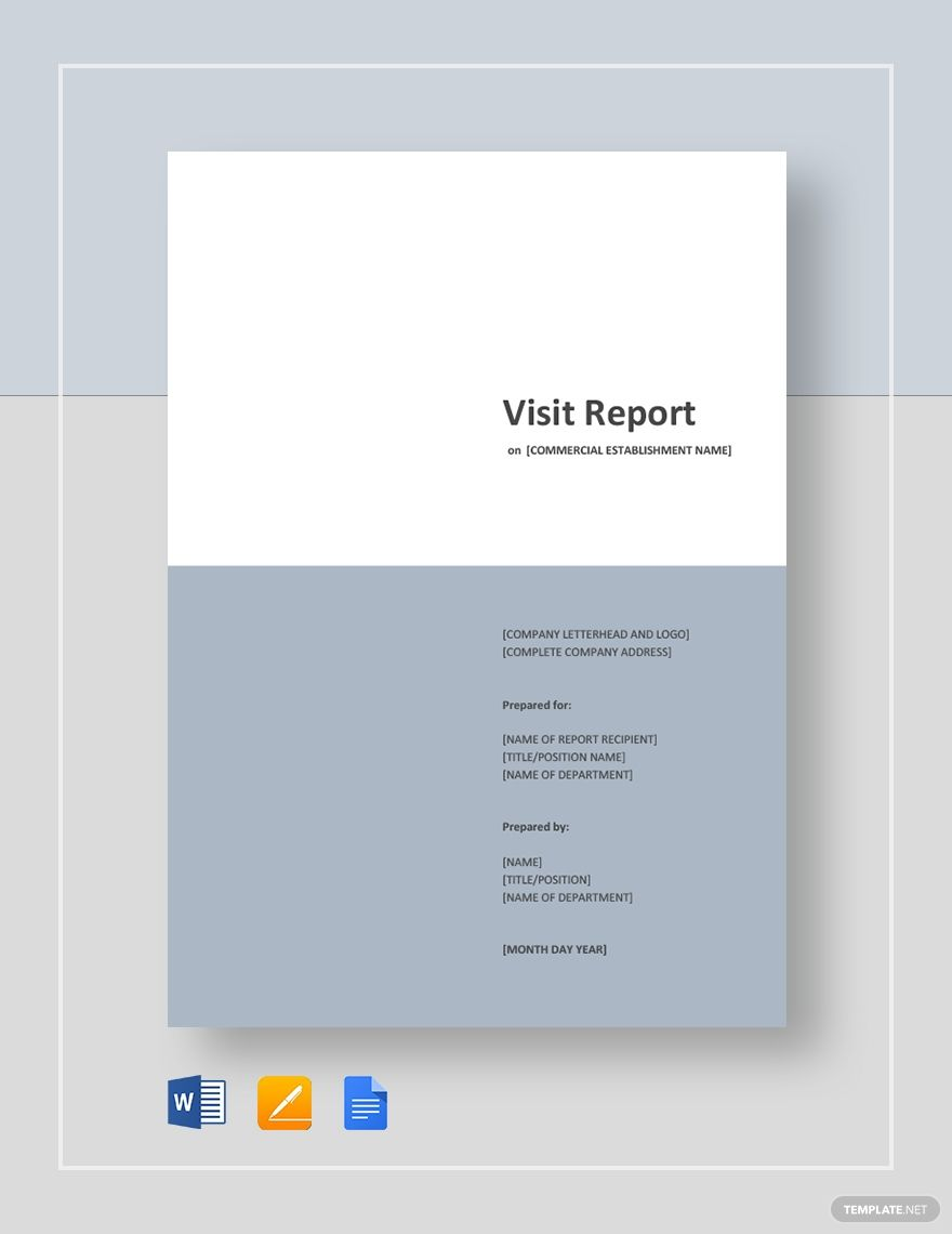 Visit Report