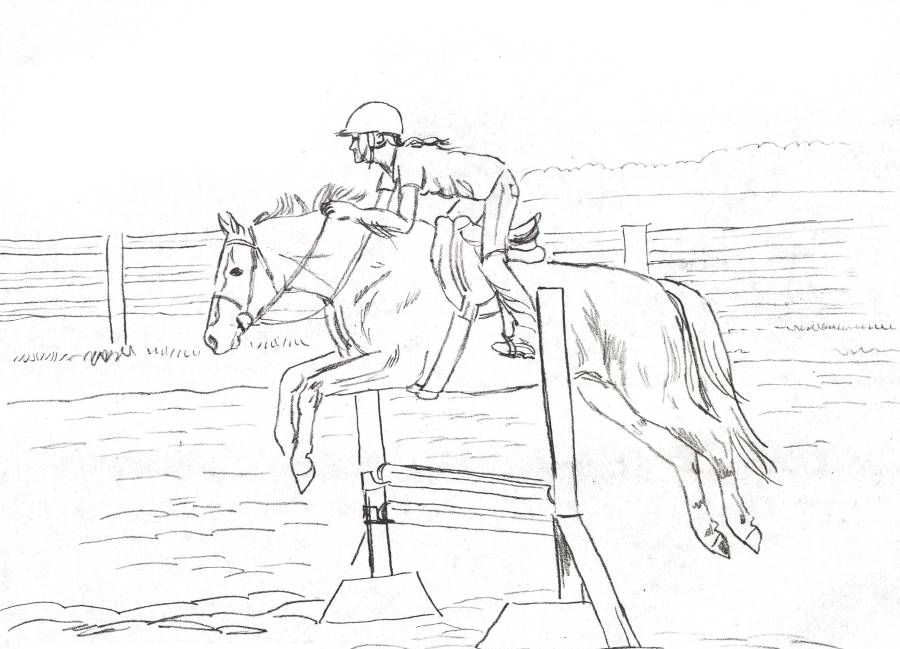 Coloring Rocks Horse Coloring Pages Horse Coloring Horse Drawings