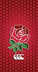 Pin By James Viljoen On Rugby Love England Rugby Samsung Wallpaper Rugby Images