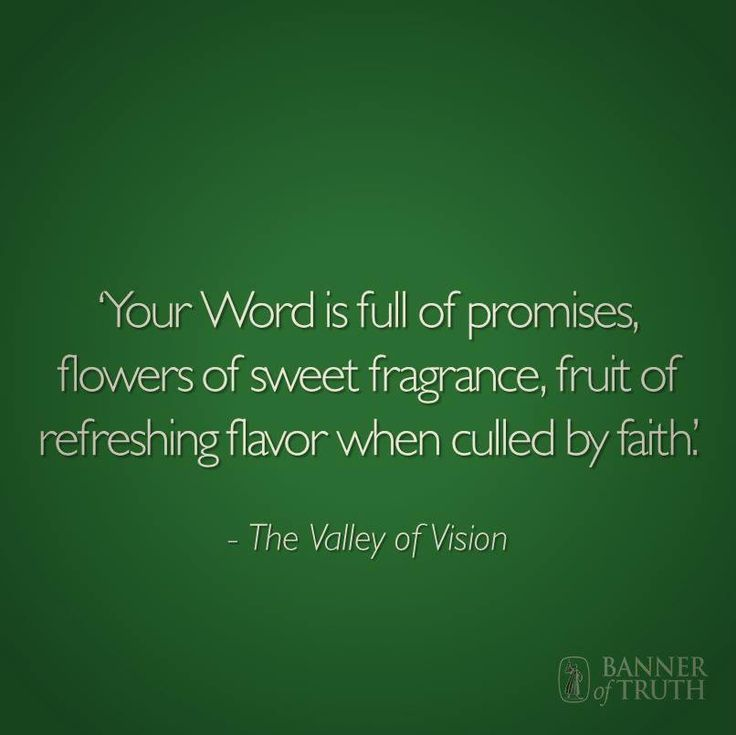 Puritan Quotes Unique Pincindy Rammdoucette On Quotes Valley Of Vision  Pinterest