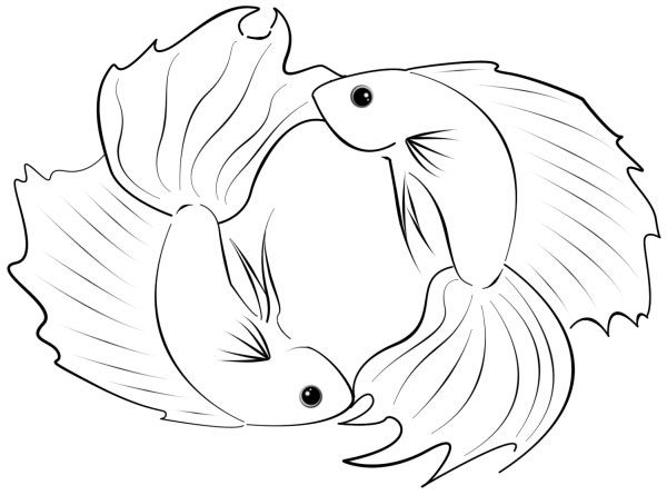 Pisces The Twelfth And Last Zodiac Sign Is Symbolized By A Pair Of Fish Swimming Head To Tail In Circle