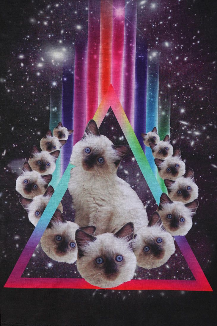 cool . Workshop Prism Kitty Tee @Ashley Urban Outfitters