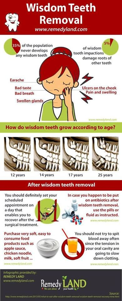 Wisdom Teeth And You Wisdom Teeth After Wisdom Teeth Removal Wisdom Teeth Removal Recovery