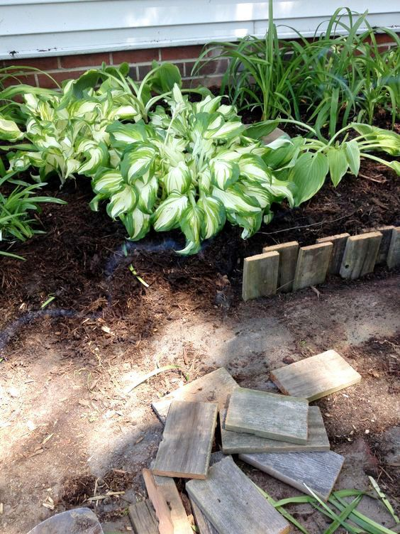 42 Beautiful Garden Bed Edging Ideas With Pictures Garden Edging Lawn And Landscape Cheap Garden Beds