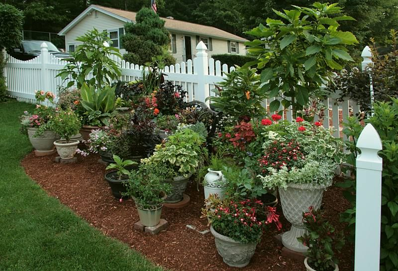 Large Container Garden #HerbalGarden >> See more great tips about ...