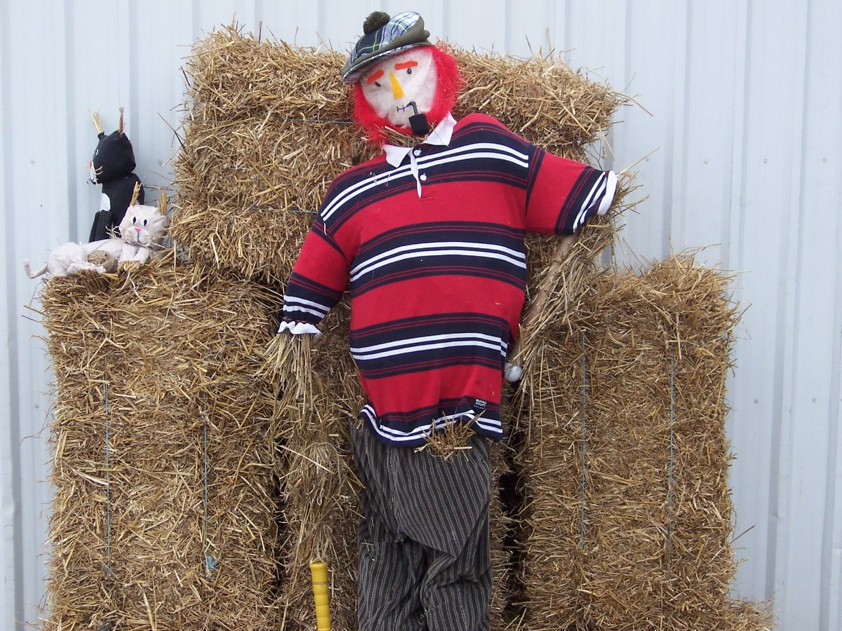 Red Beard Scarecrow! Fall Fest!