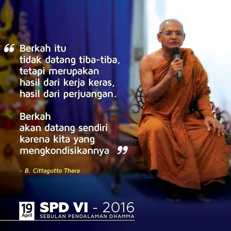 pin on buddha quotes