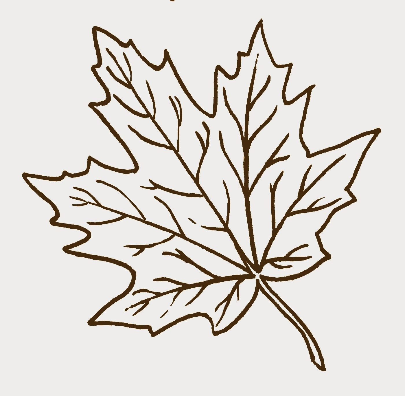 Uncategorized Fall Leaves Drawing learn how to draw maple leaves with easy step by drawing lessons for kids