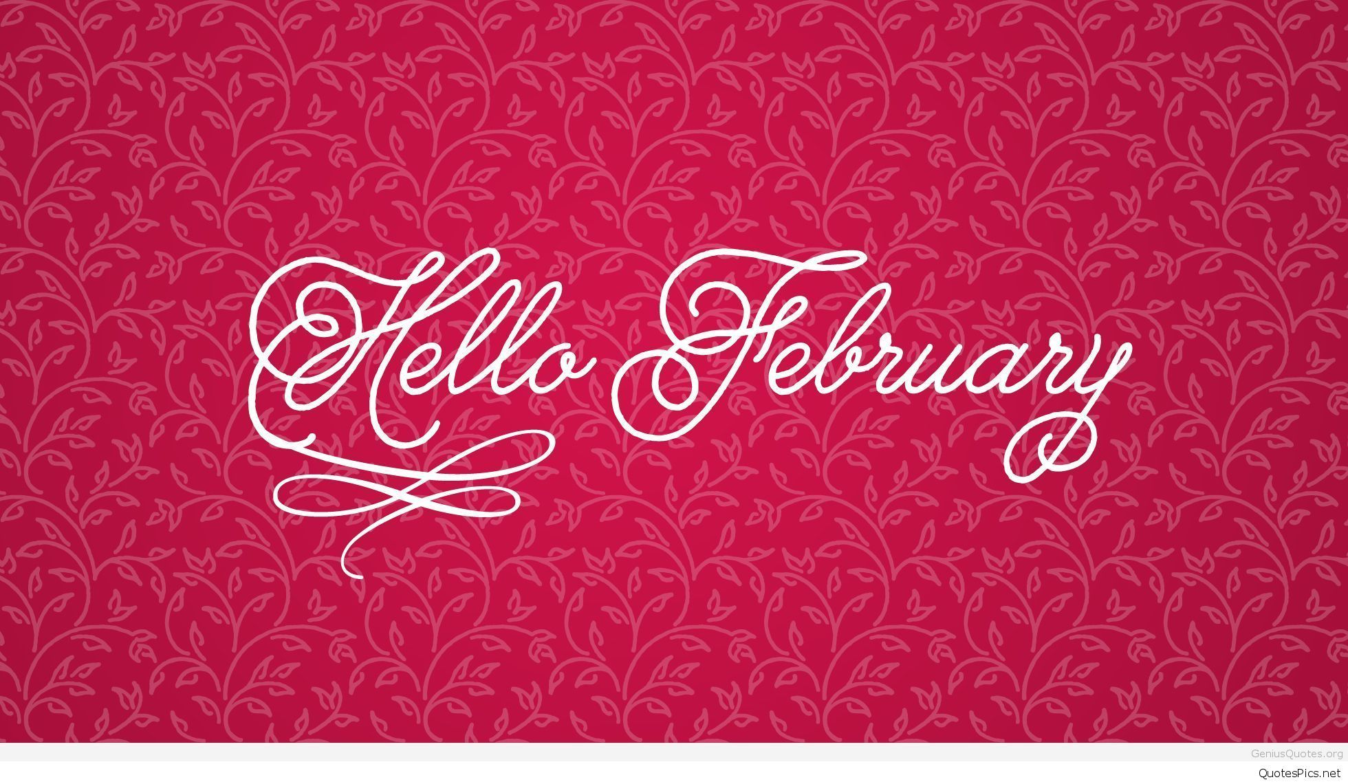Hello February Awesome Images And Sayings HD Wallpaper