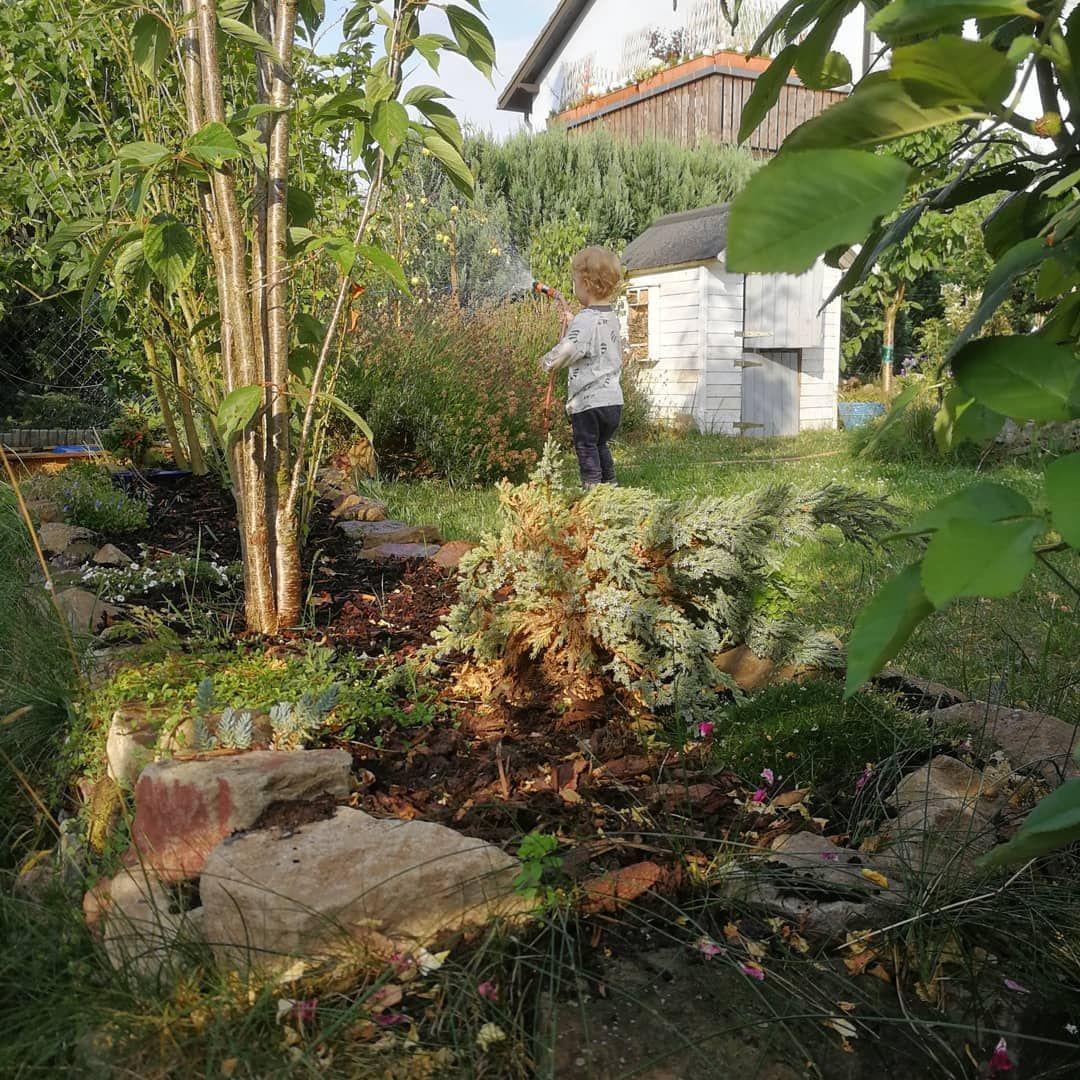 Kleiner Gartenfreund Garten Naturgarten Gartenarbeit Gartenideen Gartengestaltung Gardening Lovegardening Gartenarbeit Naturgarten Garten