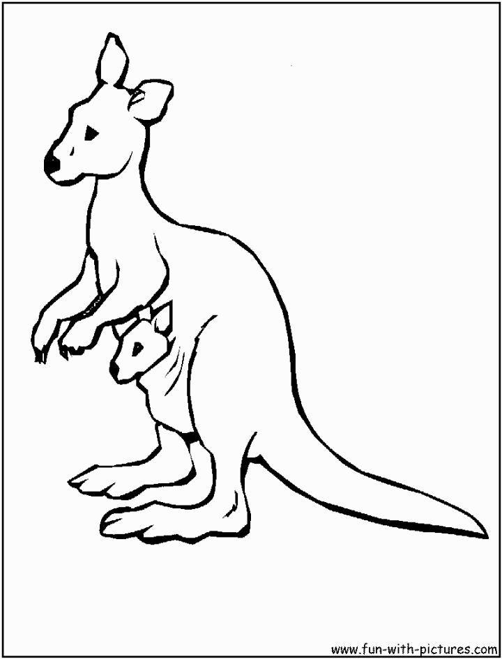 Kangaroo Coloring Page Animal Coloring Pages Coloring Pages Coloring Pages For Kids
