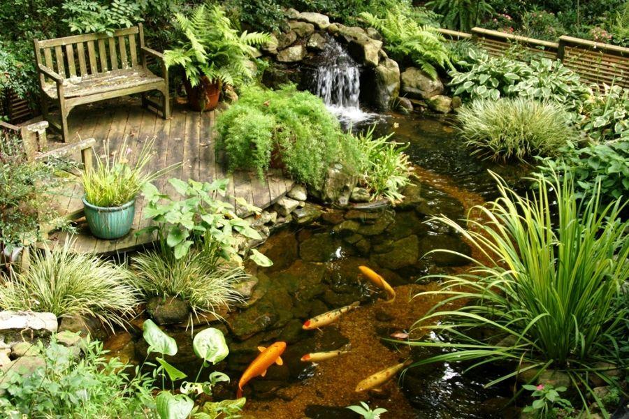 estanque artificial con peces Paisajismo Pinterest Estanques