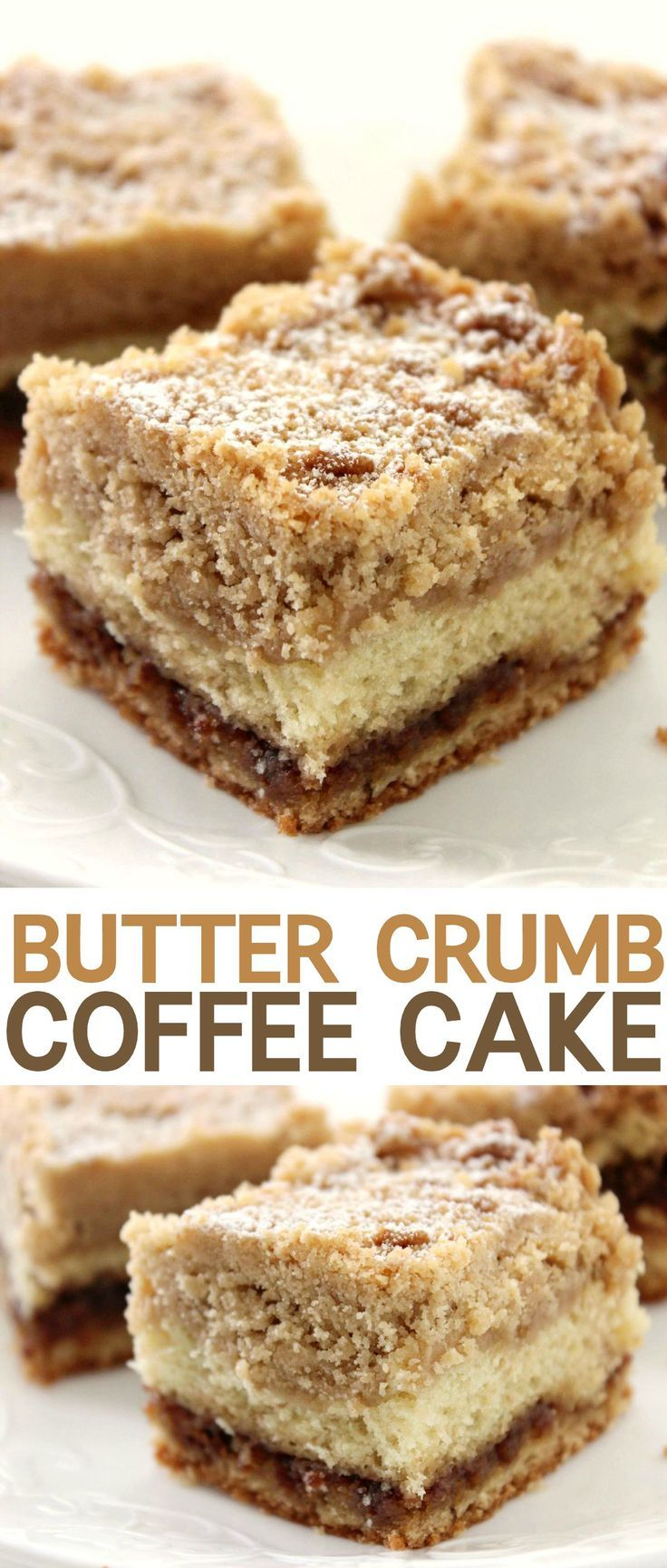 Homemade Butter Crumb Coffee Cake! This delicious and moist cake is perfect for a Sunday brunch with family or quick bite before work!