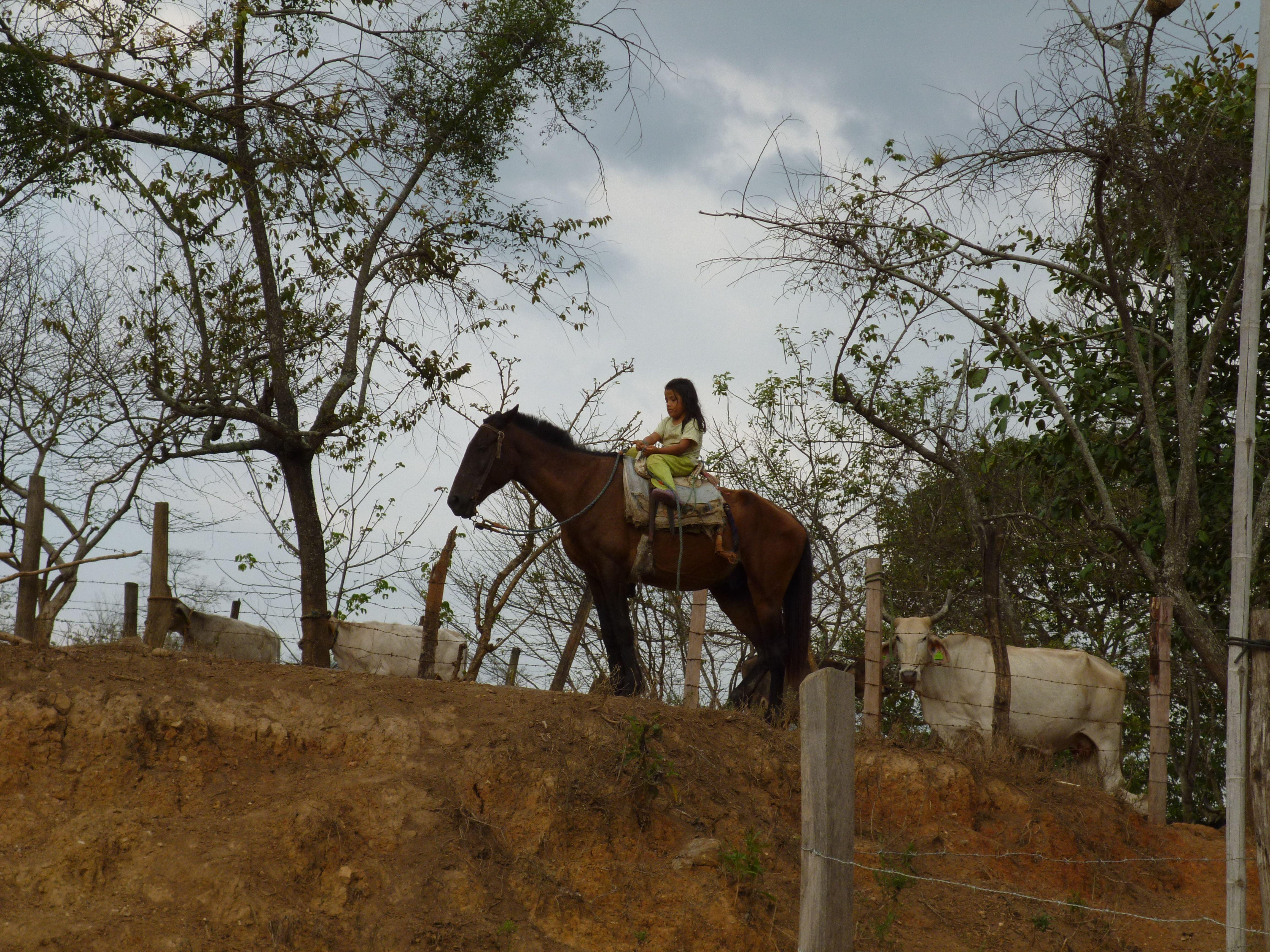 A child rides her horse outside Puyango, Ecuador.