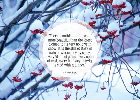 Awesome Quotes About Snow Quotes Pinterest