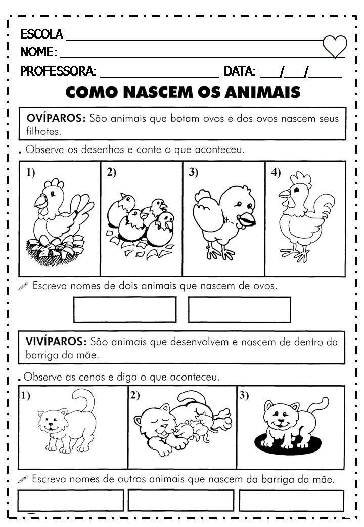 Colecao No Mundo Da Alfabetizacao Editora Fapi Atividades