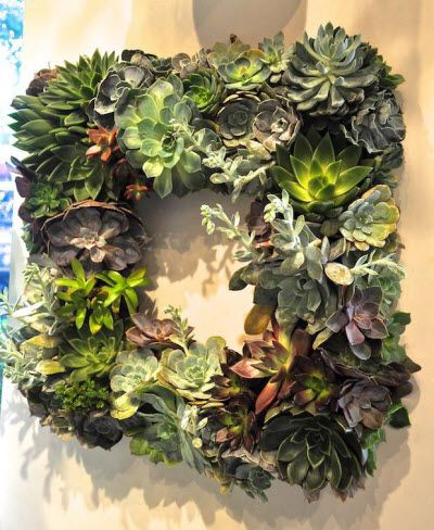 Succulent wreaths > pine cones wreaths. Available at Avant Garden in Highland Park Village!