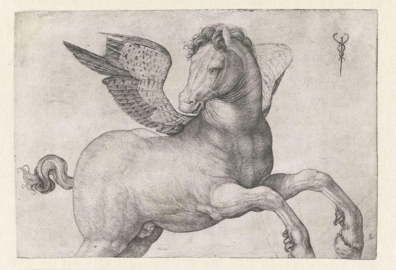 Jacopo de' Barbari   Pegasus, Jacopo de' Barbari, 1509 - 1516   löydät korkearesoluutioisen kuvan www.rijksmuseum.nl