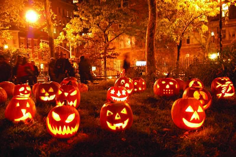 Image result for halloween garden