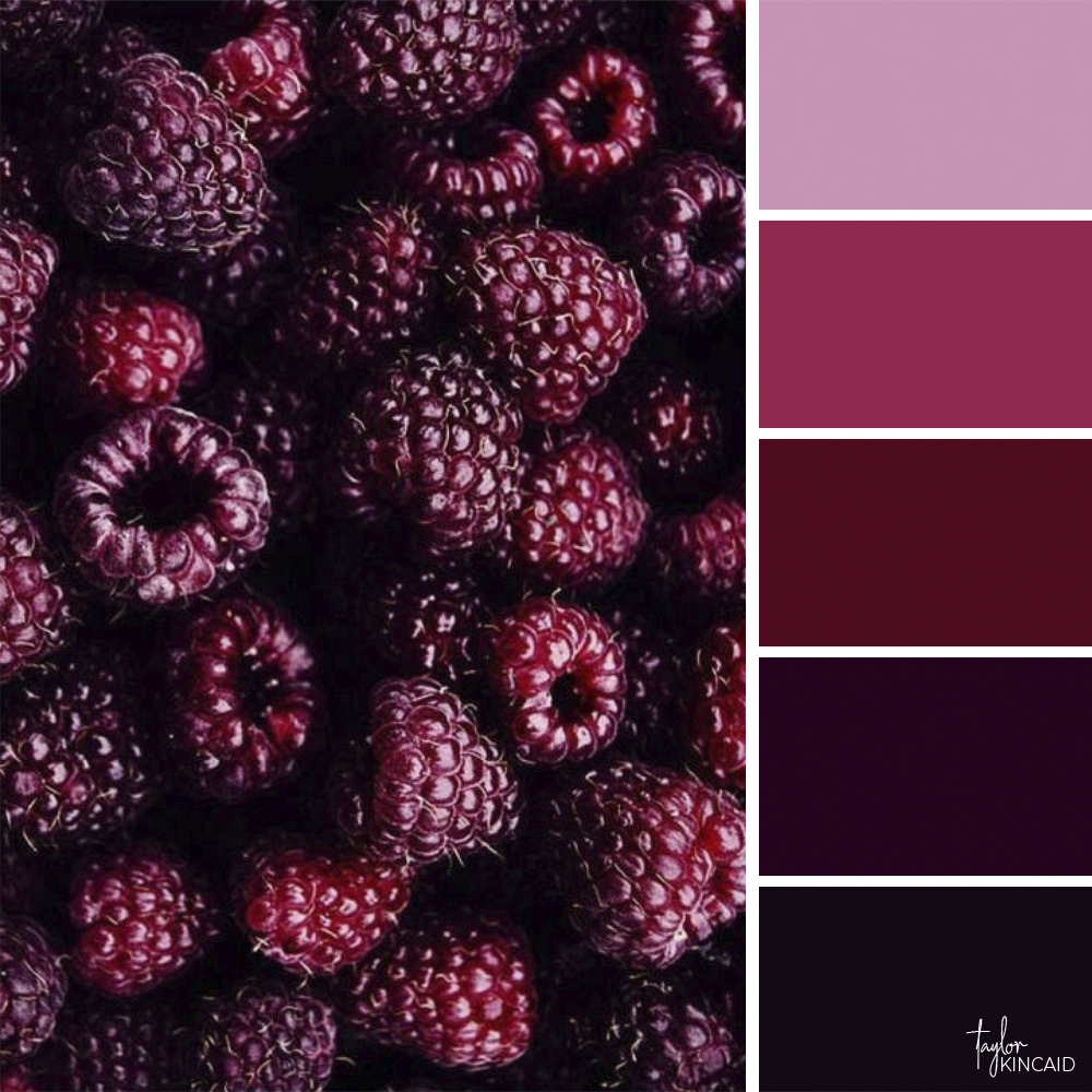 Color inspiration from a group of raspberries! #red #pink ...